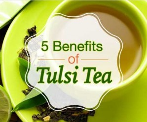 Benefits-of-Tulsi-TeaFeat