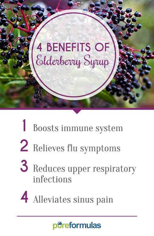 4 benefits of elderberry syrup pureformulas - Fir tree syrup recipe and benefits ...