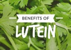 Benefits-of-Lutein_Text