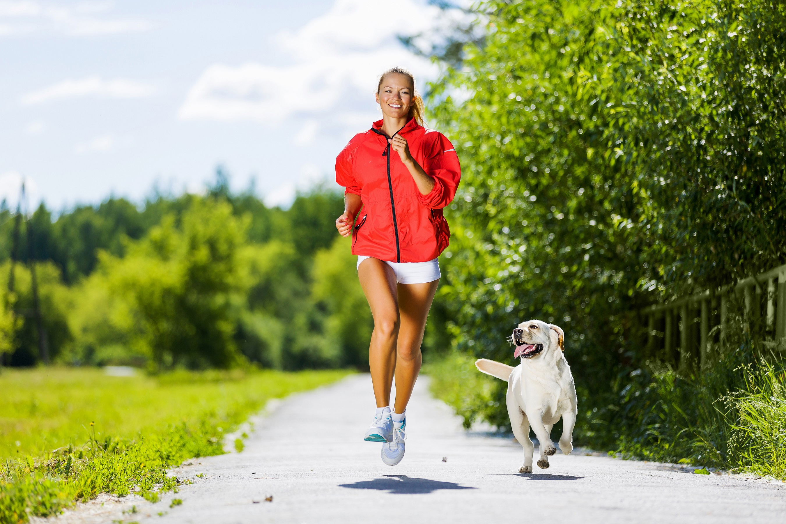 tips for working out with your dog