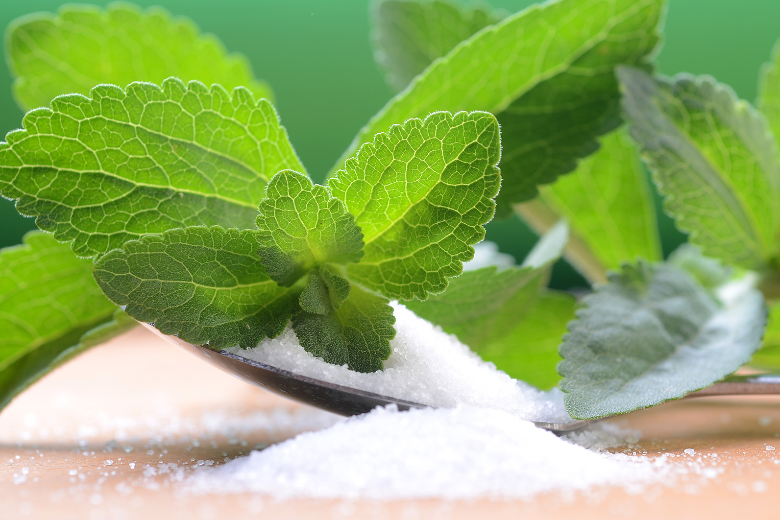 What's Really Going On With Stevia?